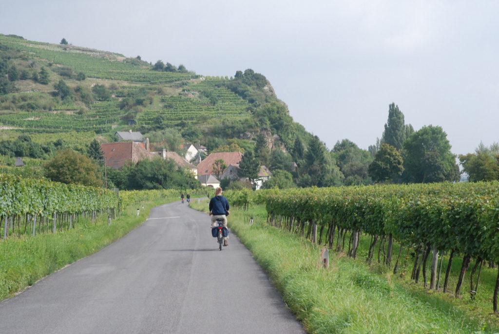 I Wachau dalen dyrkes vin på skråningerne