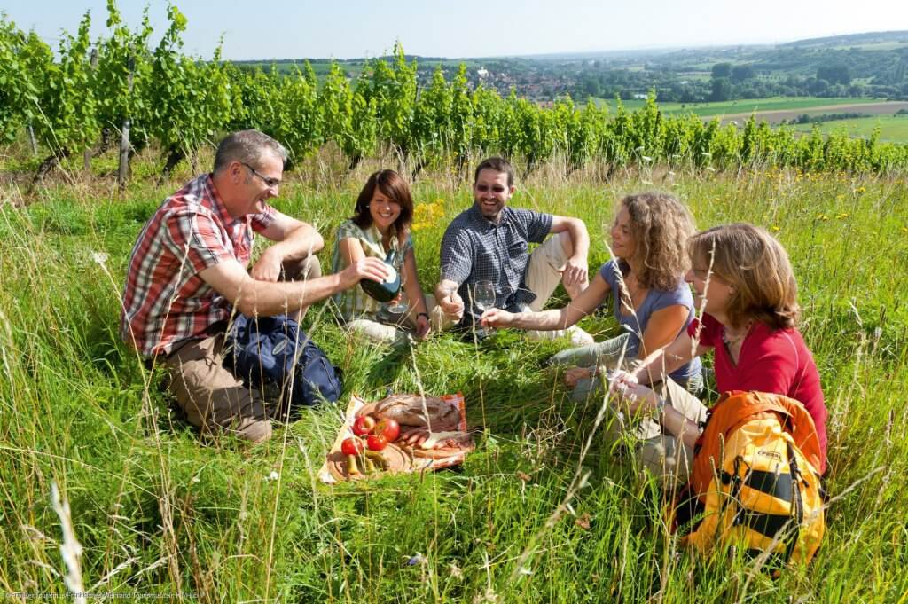 Picnic i vinmarkerne! Køb en stilk tomater, et brød, nogle fantastiske skiver skinke eller pølse og stik en god flaske hvidvin i cykeltasken. Pauserne er allebedst på en cykelferie!